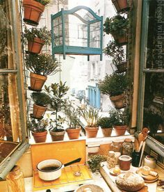 How nice it is to plant your herbs right by the kitchen window so u can easily grab them for cooking!