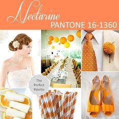 Nectarine  PANTONE 16-1360