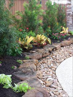 Rochas e plantas fazem um lindo conjunto.