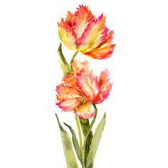 ZaSlike.com - Besplatni upload slika! ❤ liked on Polyvore featuring flowers, backgrounds, fillers, plants and tubes