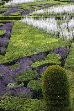 Villandry Castle Garden - France