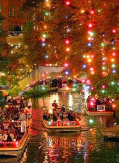 I've been to San Antonio before but never at Christmas time :). Beautiful Christmas lights , San Antonio River Walk : Jewel of the city , Texas San Antonio Riverwalk, Dream Vacations, Vacation Spots, Texas Vacations, River Walk, Noel Christmas, Christmas Displays, Christmas Travel, Christmas Images