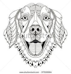 Golden retriever dog zentangle stylized head, freehand pencil, hand drawn, pattern. Zen art. Ornate vector.
