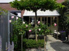 Kleine tuin, Boxmeer, met romantische beplanting