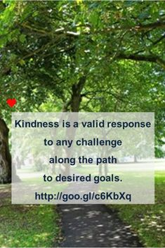 Kindness is a valid response to any challenge along the path to desired goals. Message me so we can talk about how coaching could help. #coachingviaskype #coachingviahangout #coachingwithwords #liveyourpotential #whywait H Words, Going Through The Motions, Do You Feel, No Response, Coaching, Challenges, Goals, Messages, Feelings