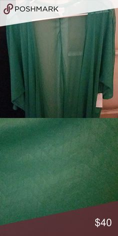 LULAROE LINDSAY Kelly Green with a chevron pattern...size medium. This would look really pretty with the abstract patchwork leggings, the cowgirl boots and the bird leggings I have in my closet!! LuLaRoe Jackets & Coats Capes