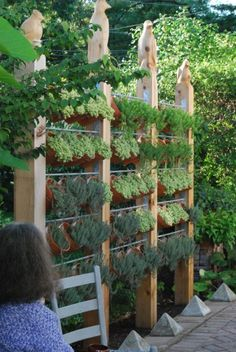 Urban Garden Design 40 DIY Vertical Herb Garden Ideas to Have Fresh Herbs on Hand - Having your favorite fresh herbs close by for cooking is possible, even if you don't have lots of space. Just create a vertical herb garden! Privacy Fence Landscaping, Garden Privacy, Backyard Privacy, Landscaping Ideas, Fence Garden, Privacy Fences, Fencing, Backyard Ideas, Vertical Herb Gardens