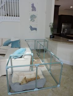 Large Dog Crate, Large Dogs, Puppy Pens, Dog Bedroom, Puppy Room, Bunny Cages, Dog Spaces, Dog Pen, Animal Room
