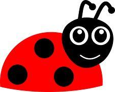 Ladybug, Beetle, Ladybird, Funny