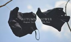 nest Robe Nest, Autumn, Shower, Blog, Dress, Nest Box, Rain Shower Heads, Fall Season, Fall