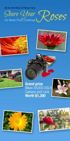 Win A Nikon DSLR