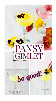 Don't just admire those pretty pansies, use them to make this gorgeous and delicious pansy gimlet!  Edible pansy petals make a pansy simple syrup that you can use in so many cocktails, like this pansy gimlet!  It's so light and floral and so good! Easy Gin Cocktails, Classic Gin Cocktails, Gin Cocktail Recipes, Easy Drink Recipes, Punch Recipes, Gin Lemon, Simple Syrup, Party Drinks, Pansies