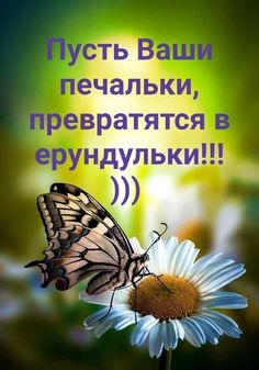Life Plan, Positive Thoughts, Life Is Beautiful, Good Morning, Best Quotes, Congratulations, Humor, Memes, Funny