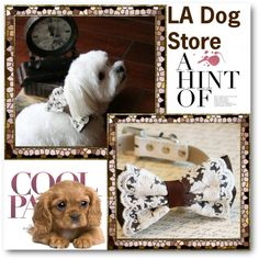 LA Dog Store by ladogstores on Polyvore featuring rustic and country