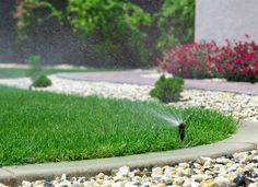 Did you know that there are incorrect ways of mowing and watering your lawn? You could be damaging your lawn without you even knowing it! Let the professionals help you and make lawn care as easy as Contact us now and let us do the dirty work for you. Sprinkler Repair, Sprinkler Heads, Concrete Garden Edging, Cap Vert, Lawn Care Tips, Pergola Pictures, Lawn Sprinklers, Green Lawn, Irrigation