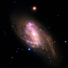 This composite image shows the spiral galaxy NGC 3627, located about 30 million light years from Earth.