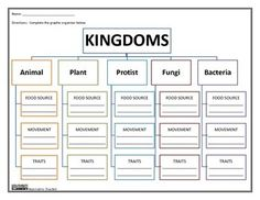 Kingdoms Graphic Organizer by Innovative Teacher.  Included are 3 versions of this graphic organizer that will give your students a better understanding of the Animal Kingdom. Included are the 5 groups and three opportunities for your students to compare and classify each group. Groups include Animal, Plant, Protist, Fungi, and Bacteria.