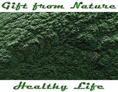 Spiruline Algue Spiruline en poudre tisane sauge Bio 100g