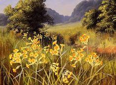 Коллекция картинок: Луговые и полевые цветы Mary Dipnall