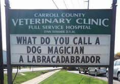 18 Brilliant Signs That Prove Vet Clinics Have a Great Sense Of Humor - World's largest collection of cat memes and other animals Corny Jokes, Dad Jokes, Tech Humor, Vet Tech Quotes, Funny Signs, Hilarious Sayings, It's Funny, Hilarious Animals, 9gag Funny