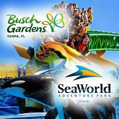 Seworld Orlando and  Busch Gardens Tampa $99  – 2 Park Deal! #hotdeals #savings #entertainment