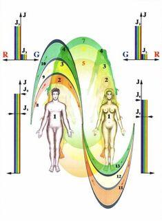 Energetická výmena medzi mužom a ženou počas intímneho spojenia | CEZ OKNO Health Advice, Tarot, Princess Zelda, Reiki, Fictional Characters, Tela, Psychology, Fantasy Characters, Tarot Cards