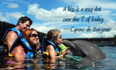 Swim with the Dolphins Riviea Maya Cancun