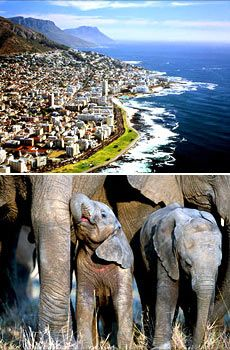 Amazing Cape Town-Jo'burg South African vacation