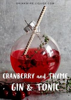 A Gin & Tonic is always a great choice of cocktail, but here's a little holiday twist on the classic! And if you want to get really fancy, simply use a clear ornament as the glass!