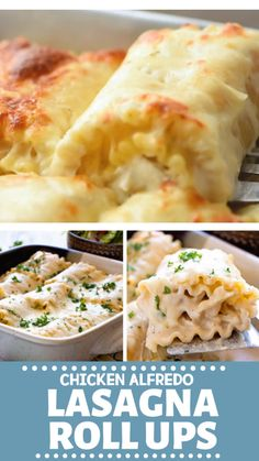 These easy Chicken Alfredo Lasagna Roll Ups are perfect for a quick and delicious dinner for your family! These creamy chicken alfredo lasagna is freezer friendly and also makes a great recipe to share with friends! Save these cheesy chicken lasagna roll ups for later!