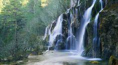 Bosc del Gerdar - Pallars Sobirà