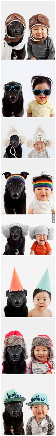 A dog and her little boy
