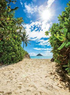 Croatia Travel, Thailand Travel, Bangkok Thailand, Hawaii Travel, Italy Travel, Oahu Beaches, Tropical Beaches, Orlando, Surf Competition