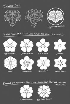 Daily Draw Feburary Ivy Crests and Flowers That All Look the Same Japanese family crests (mon) are a fascinating subject for me. If you're at all interested I can't recommend The Elements of Japanese Design, John Dower enough. Chinese Patterns, Japanese Patterns, Japanese Design, Japanese Art, Japanese Family Crest, Fleur Design, Art Asiatique, Stamp Carving, Japanese Flowers