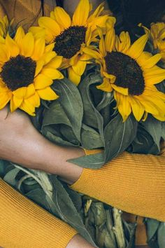 Радикал-Фото: Картинка Yellow Aesthetic Pastel, Aesthetic Colors, Flower Aesthetic, Aesthetic Photo, Aesthetic Art, Aesthetic Pictures, Sunflower Photography, Girl Photography, Sunflower Pictures