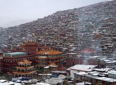 거대한 티베트 '수행촌'  http://i.wik.im/74456