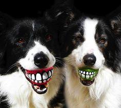 Rogz Grinz Smiling Ball Dog Toy