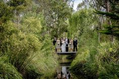 My Photo Gallery | Melbourne Wedding Photography | Yarra Valley Wedding Photographers | Marc Grist Photography