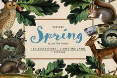 Vintage Spring Illustrations @creativework247
