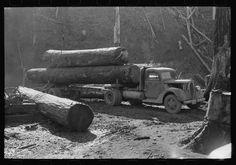 Loading logs onto truck, Tillamook County, Oregon