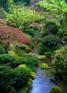 beautiful garden with stream