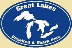 Unsalted and Shark Free.  I loved the beaches in Michigan.