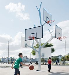 arbre_a_basket1.jpg (677×738)