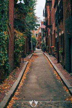 Weekend Getaway in Boston,Acorn STreet in Boston in the fall... Weekend Getaway in Boston,  #Boston #Getaway #Photography #weekend<br> Boston In The Fall, In Boston, Boston Art, Dog Wallpaper, Travel Wallpaper, Weekend Trips, Weekend Getaways, Boston Weekend, Street Photography