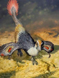 Khaan mckennai (dinosaurio ovirraptórido del Cretácico de Mongolia, 72Ma) (James Gurney)