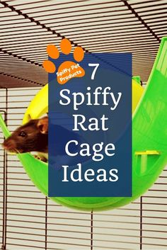 Chinchillas and other Small Animals Basic Cage Set Sugar Gliders for Hedgehogs Rats Guinea Pigs Pick Your Pattern