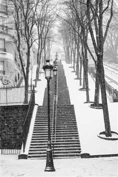 Montmartre Stairs in the Snow