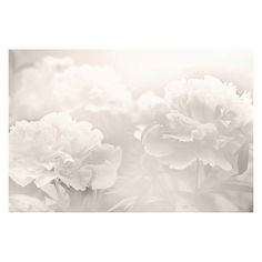 Marmont Hill Peony Painting Print on Wrapped Canvas - MH-WHT-04-C-18