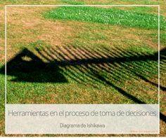 Herramientas en el proceso de toma de decisiones (II)