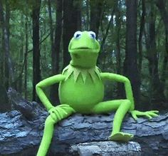 kermit the frog gifs - Bing Images